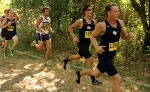 31st Men's Cross Country at Central Invite Photo